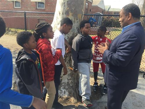 Boys meet at a tree on the PLJCA playground